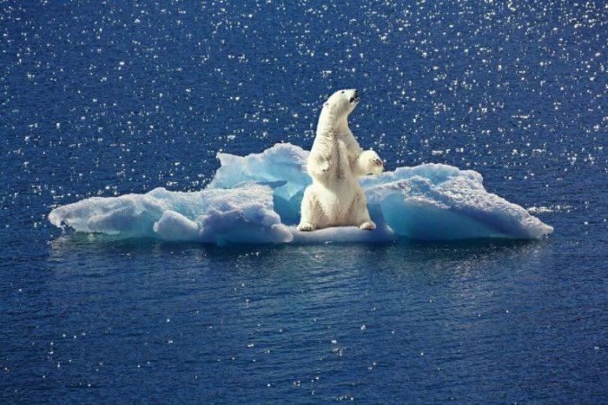 environmental risks across the globe