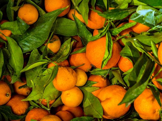 Organic Vegetables, Fruit (2)
